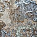 Peeling Wall. by Izabella Zubkova