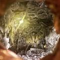 Peephole by Flavia Westerwelle