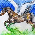 Pegasus by Angel Ciesniarska