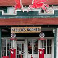 Pegasus At Keeler's Korner I by E Faithe Lester