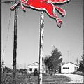 Pegasus by Tony Rubino