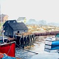 Peggy's Cove Harbour by Patricia L Davidson