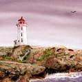 Peggy's Cove Light House by Barry Jones