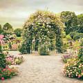 Peggy's Rose Garden by Jessica Jenney