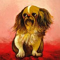Pekinese by Christine McGinnis