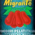 Pelati Migrante 2008 by Gennaro Cicalese