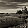 Pelican Bay Morning - Yellowstone by Sandra Bronstein