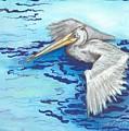 Pelican by Carliss Prosser