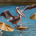 Pelican Crash by Loretta McNair