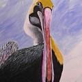Pelican Head by Anne Marie Brown