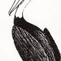 Pelican Paradise Portrait In Ink C2 by Ricardos Creations