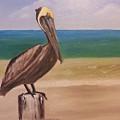 Pelican Rest Stop by Bev Conover