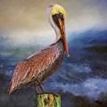Pelican Seas by Alice Gipson