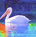 Pelican With Blue by Karen Sturgill