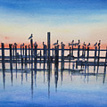 Pelicans At Dusk by Catherine Wilson