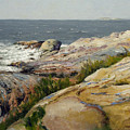 Pemaquid Point by Bruce Newman