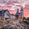 Pemaquid Point Lighthouse  by Benjamin Williamson