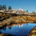 Pemaquid Reflection by Greg Fortier