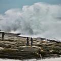 Pemaquid Surf by John Meader