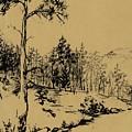Colorado Landscape by Ellen Palmer Legacy Art