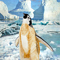 Penguin Chick In The Arctic by Angeles M Pomata