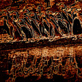 Penguin Reflections by James Hill