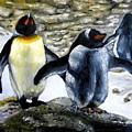 Penguines Original Oil Painting by Natalja Picugina