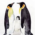 Penguins by Daniela Valentini