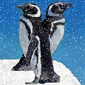 Penguins In The Snow by Patricia Barmatz