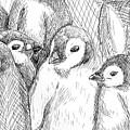 Penguins by Sarah Iwany