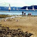 Penn Cove Clamming by Valerie  Moore