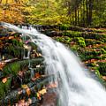 Pennsylvania Autumn Ricketts Glen State Park Waterfall by Mark VanDyke