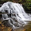 Pennsylvania Waterfall by Christina Rollo