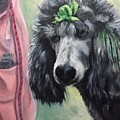 French Poodle  by FayBecca