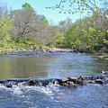 Pennypack Creek - Philadelphia by Bill Cannon