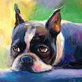 Pensive Boston Terrier Dog Painting by Svetlana Novikova
