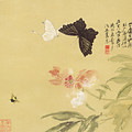 Peonies And Butterflies by Zhang Daqian