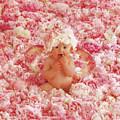 Peony Angel by Anne Geddes