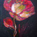Peony by Richard Le Page