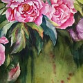 Peony by Thao Le