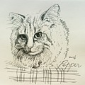 Pepper by Pookie Pet Portraits