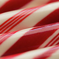 Peppermint Stripes by Ana V Ramirez