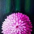 Perennial by Neena
