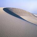 Perfect Dune by Robert Potts