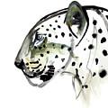 Perfect Profile by Mark Adlington