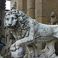Perseus And Lion In The Loggia Della Signoria In Florence Italy by Gregory Dyer