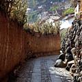 Peruvian Pathway by Susan Schumann