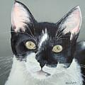 Pet Portrait Painting Commission Tuxedo Cat  by Sharon  Lamb