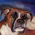 Pet Portraits by Darla Joy  Johnson