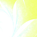 Petals IIi by Kimberly Hansen
